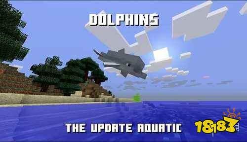 我的世界海豚特性介绍 寻找海底宝藏必备