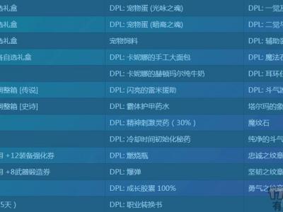DPL比赛装备时装限制规则 DPL比赛奖励一览