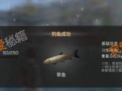 明日之后钓鱼熟练度怎么提升?