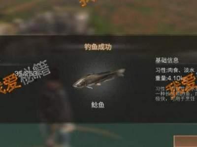 明日之后秋日森林鱼类大全_秋日森林能钓到什么鱼
