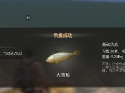 明日之后大黄鱼位置及烤大黄鱼属性攻略