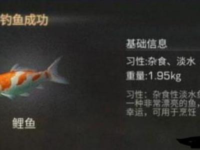 明日之后鲤鱼获取方法_明日之后烤鲤鱼制作方法教程