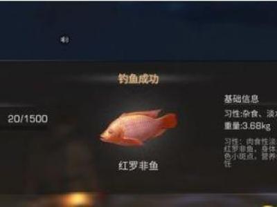 明日之后红罗非鱼在哪能钓到_明日之后烤红罗非鱼属性介绍