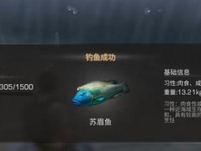 明日之后苏眉鱼在哪能钓到_明日之后烤苏眉鱼属性介绍