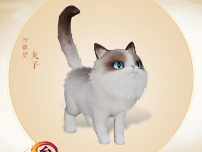 激萌来袭 《剑网3》猫咪挂宠今日首现