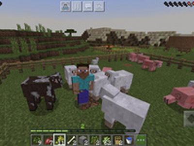 开始养殖业,如何驯养与繁殖动物?