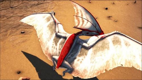 """方舟生存进化:风神翼龙的近亲,哈特兹哥翼龙""""爱的魔力转圈圈"""""""