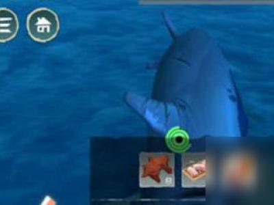 创造与魔法鲨鱼心有用法介绍 鲨鱼心怎么获得