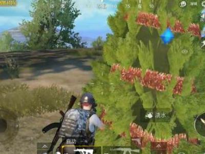 绝地求生刺激战场网红小树在哪 能浇水吐装备的树刷新位置一览