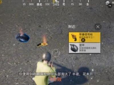 刺激战场年兽信号枪使用攻略 年兽信号枪功能作用介绍