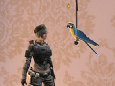 明日之后鹦鹉怎么得 鹦鹉获得方法介绍