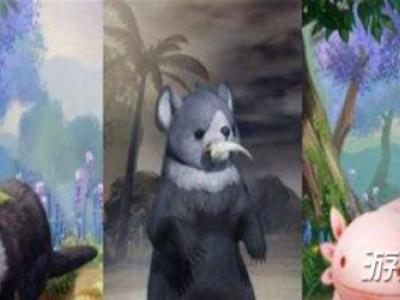 剑网3沉溪奇遇宠物获得方法心得分享
