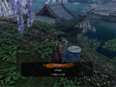 《只狼影逝二度》魚王任務流程分享 只狼魚王支線怎么過關?