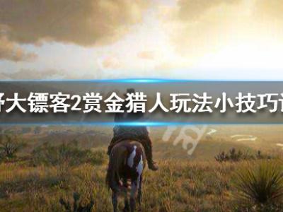 《荒野大镖客2》赏金猎人玩法小技巧详解 赏金猎人怎么玩