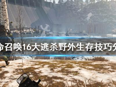 使命召唤16大逃杀野外生存技巧分享 野外怎么生存
