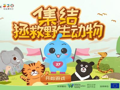 """三七互娱上线首款""""拯救野生动物""""H5游戏 为织密野生动物保护网助力"""