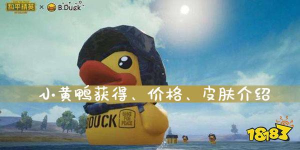 和平精英小黄鸭获得、价格、皮肤介绍