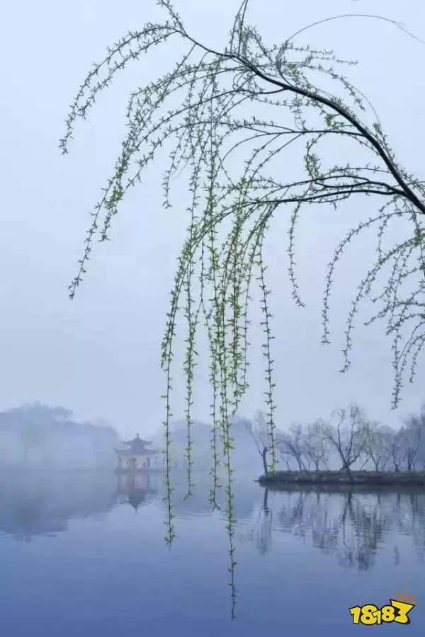 蚂蚁庄园今日答案5月27日春天 随风飘扬的白色柳絮其实是柳树的