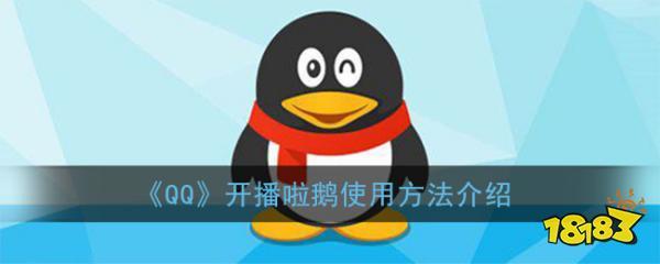 《QQ》开播啦鹅使用方法介绍