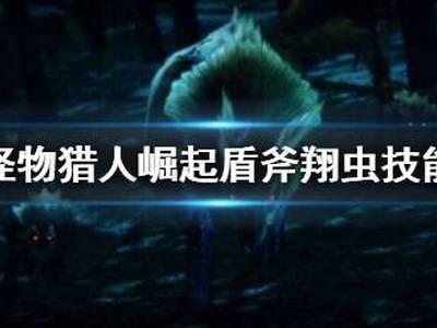 怪物猎人崛起盾斧翔虫技能介绍 盾斧翔虫怎么用