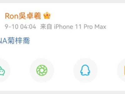 42岁吴卓羲女友HANA菊梓乔个人资料介绍 菊梓乔本名叫什么